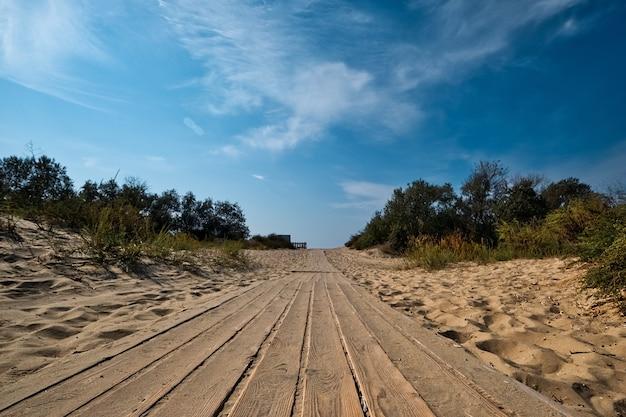 ふさふさした砂丘を通る木製の歩道