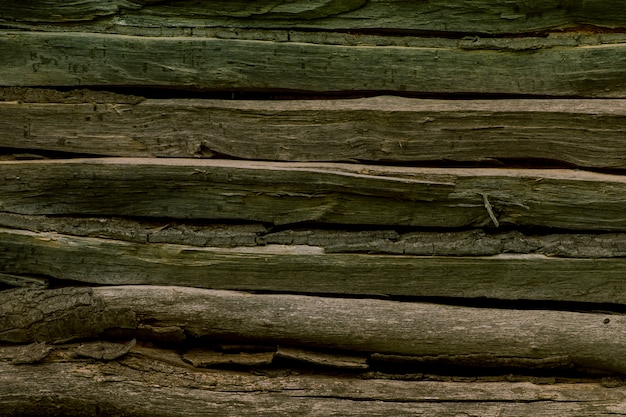 Wooden forest wall