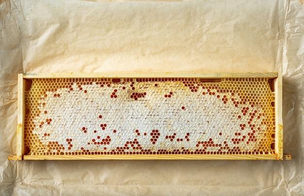 Деревянный каркас медовых сот на коричневом бумажном фоне, вид сверху