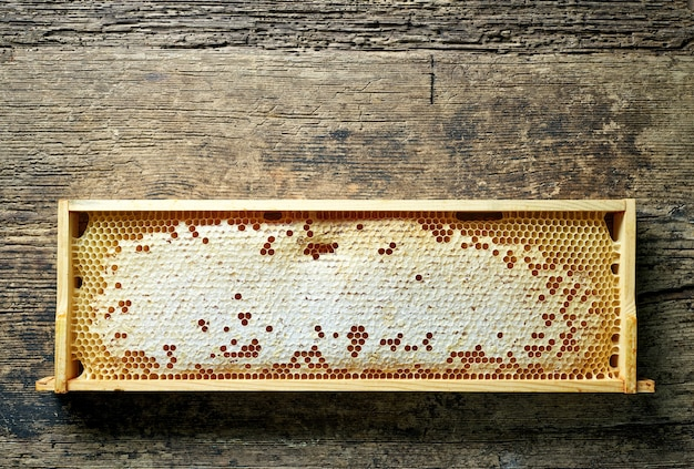 Деревянный каркас медовых сот на деревенском кухонном столе, вид сверху