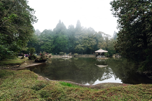 Wooden gazebo on the lake with cedar trees and fog in the background in the forest in alishan.