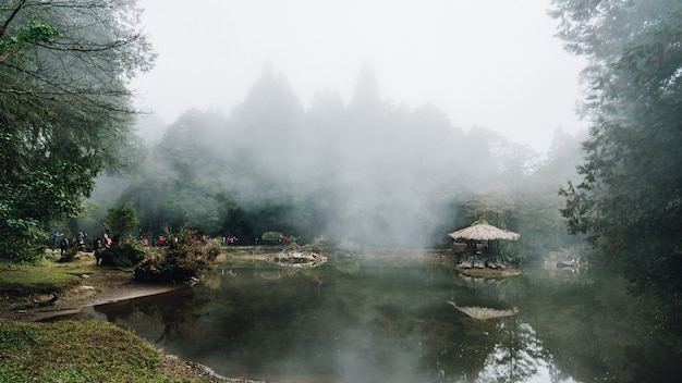 Wooden gazebo on the lake with cedar trees and fog