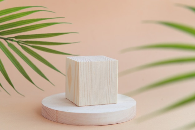 Wooden geometric shapes  cube and circle podium scene for cosmetic product beige background palm