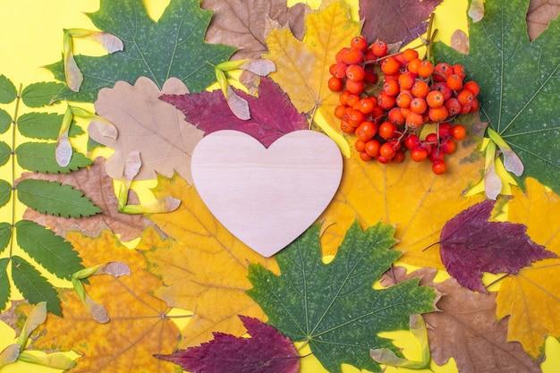 Деревянное сердце разноцветные красные, оранжевые, зеленые сухие опавшие осенние листья и оранжевые ягоды рябины на желтом фоне. осенний естественный фон. осень - любимое время года