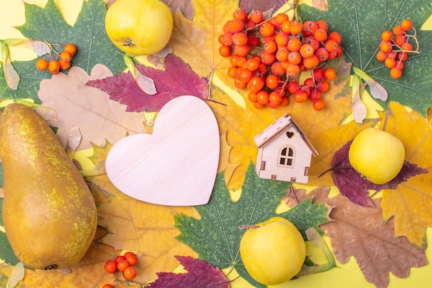 Wooden heart, the shape of a wooden house on multi-colored red, orange, green dry fallen autumn leaves and orange rowan berries, apples and pear on a yellow background.