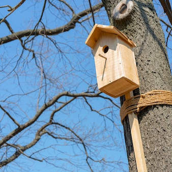 Wooden house for birds on the tree.