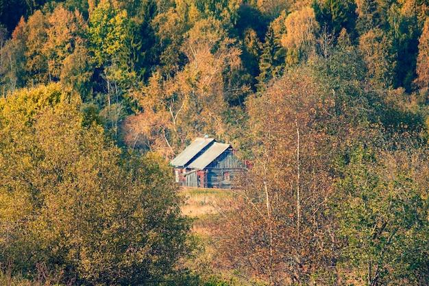 Деревянные дома возле осеннего леса в вепском лесу, ленинградская область в россии