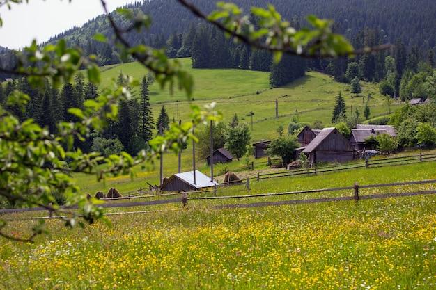 전경에 있는 꽃과 산의 잔디 언덕에 있는 목조 주택