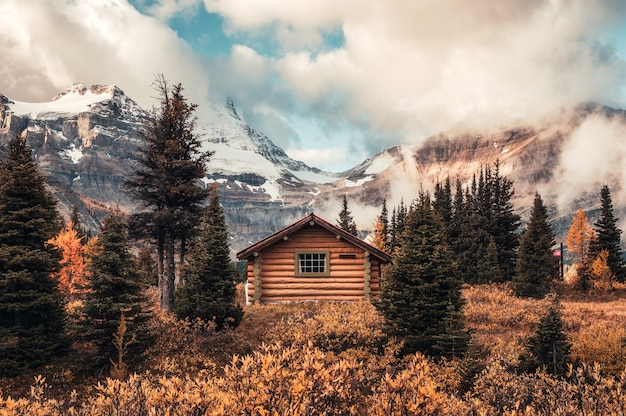 Wooden hut with assiniboine mountain in autumn forest at provincial park
