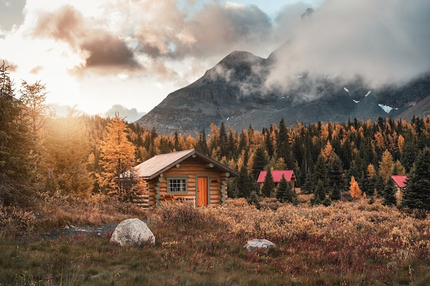 Wooden huts with sunshine in autumn forest at assiniboine provincial park