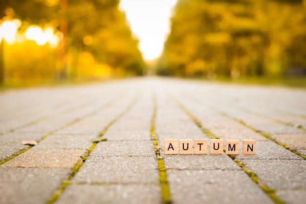 Деревянные буквы на падении аллеи.