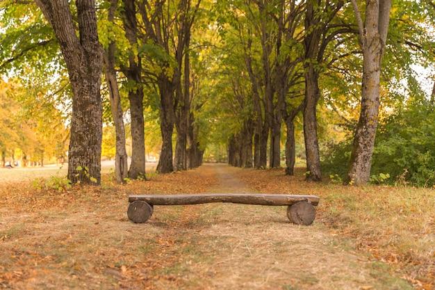 Wooden log bench in park in autumn