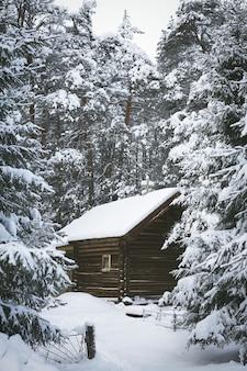 カレリアロシアの冬に雪に覆われた松林の木の木製ログハウス