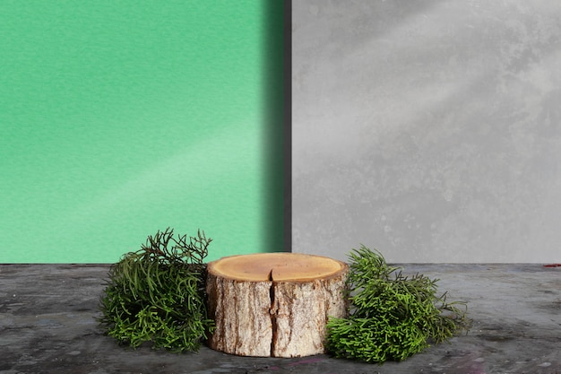 Wooden log slice and pine leaves with wall background