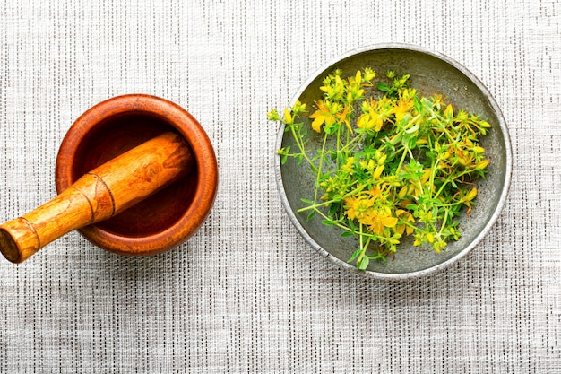 薬草と乳棒を備えた木製の乳鉢。薬草の薬用hypericum。