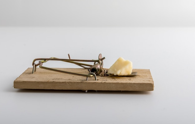 Wooden mouse trap with cheese bait