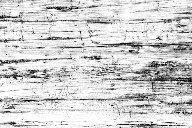 Wooden nature black and white close-up as background