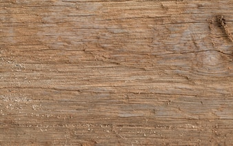 Wooden panel texture for background