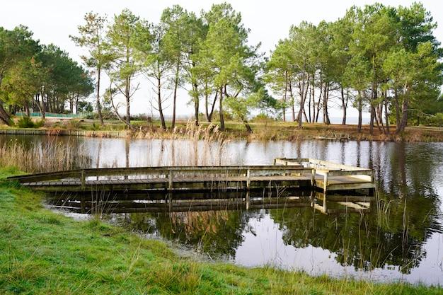 Wooden pathway boards pontoon to hourtin beach lake