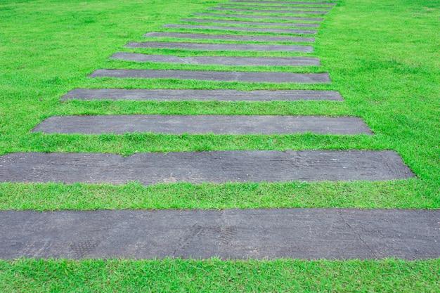 Wooden pathway in the grass garden