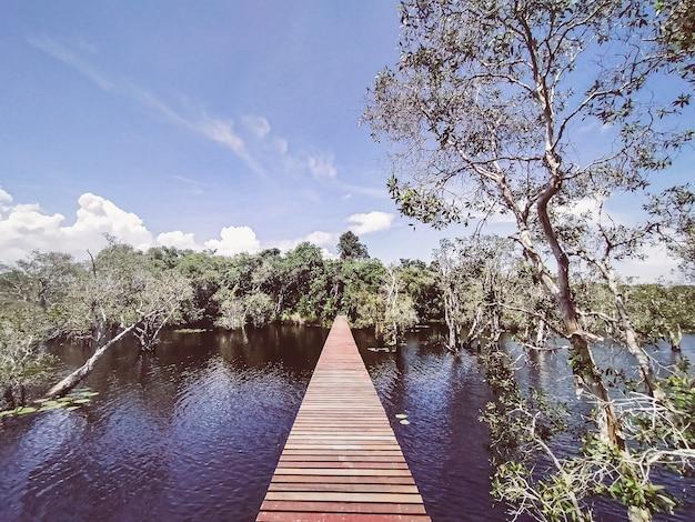 깊은 녹색 숲 호수에 나무 통로입니다. 호수와 숲 풍경이 있는 자연 트레킹을 위한 아름다운 나무 오솔길 rayong provincial east plant center thailand