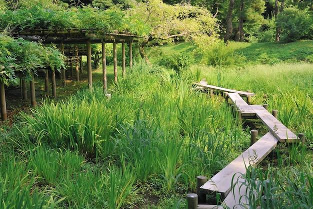 東京、日本の有名な後楽園公園内の緑の草の牧草地の木製の小道