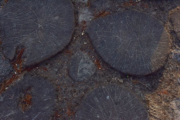 Wooden pavement from round wooden sawn stumps dug into the ground close-up