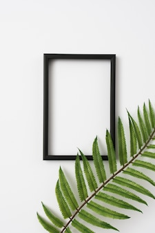 Wooden photo frame border and fern leaves branch on white background