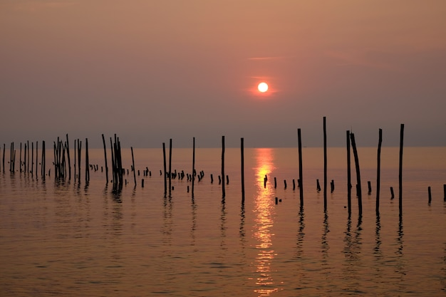 Wooden piles row in the sea in sunrise time.