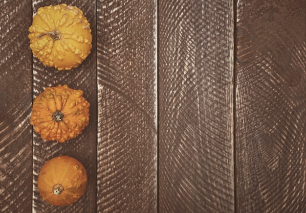 Wooden plank and yellow pumpkins