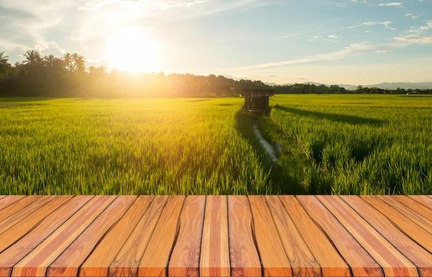 木の板と梅雨と日没の緑の田んぼの美しい自然の風景。