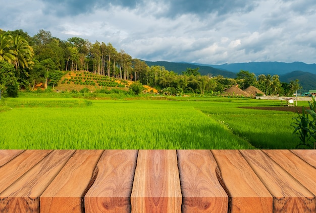 Wooden planks and beautiful natural scenery of green rice fields in the rainy season.