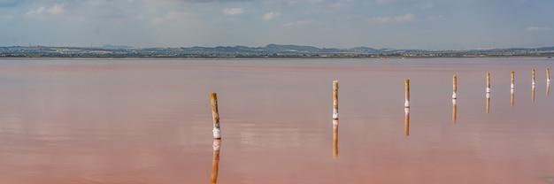 Деревянные столбы в розовом соленом озере с отражением на воде из облаков, лагуна роза, торревьеха, панорама