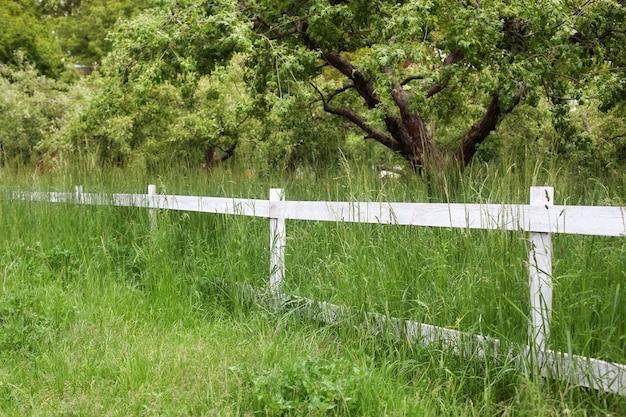 Деревянный деревенский белый забор в летнем саду фермы ранчо на заднем дворе и деревянный забор