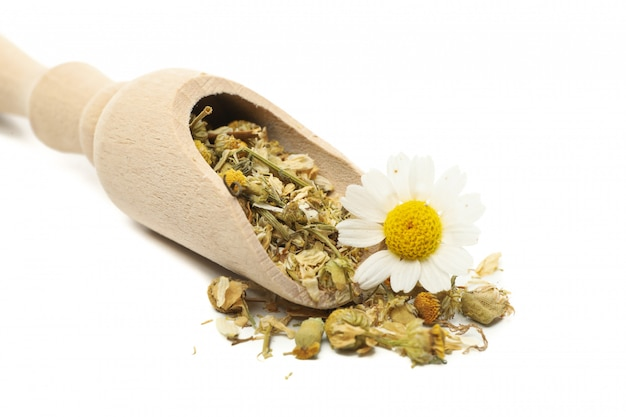 Wooden scoop with dried chamomile isolated on white background