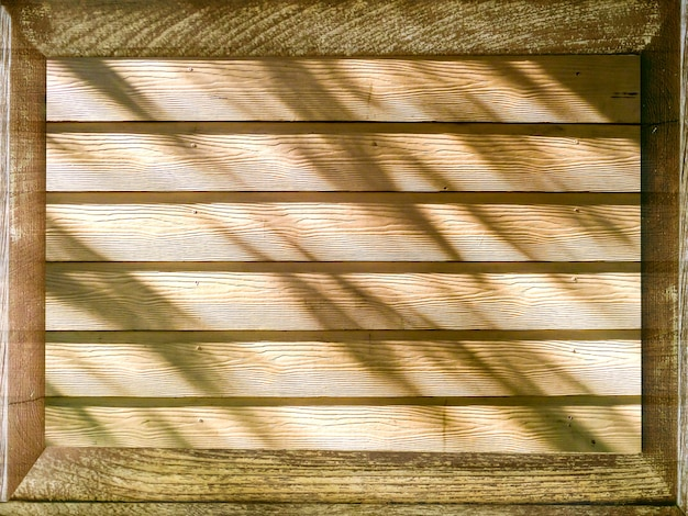 Wooden and shadow of tree sunlight
