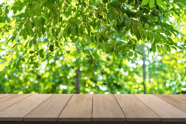 Wooden  shelves with view nature backdrop.you can used for display products. or add your own text on space.
