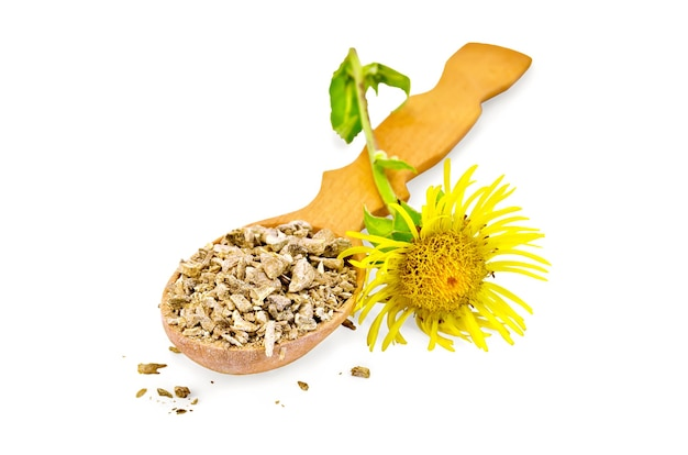Wooden spoon with dry elecampane root, yellow flower elecampane isolated on white background