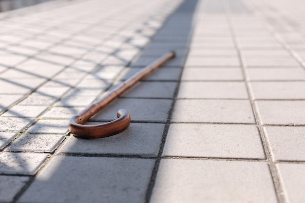 Wooden straight big stick abandoned on the ground