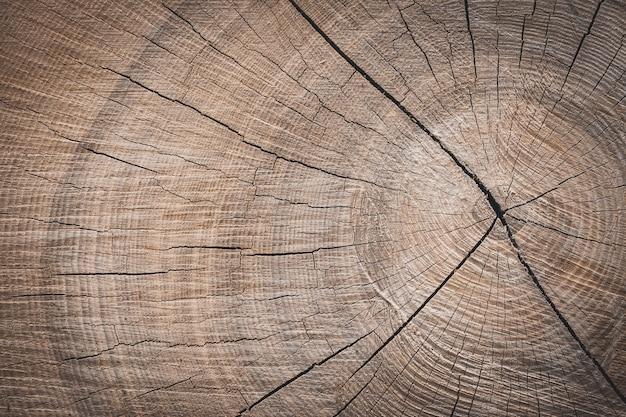 A wooden stump