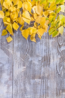 黄色の葉を持つ木の表面