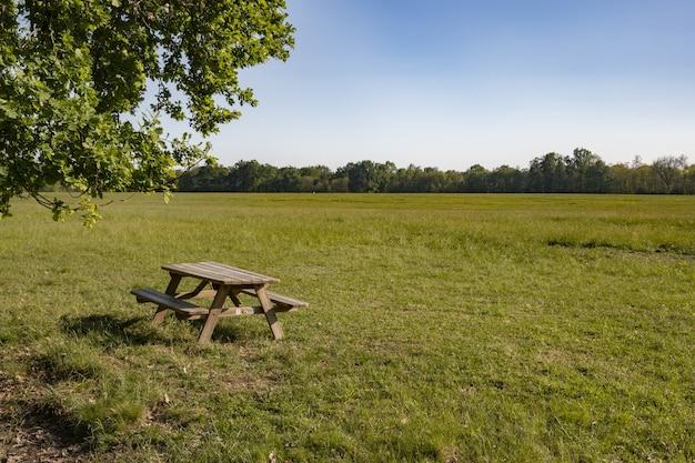 緑の牧草地にある木製のテーブルと椅子
