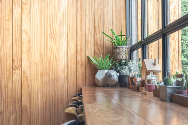 Wooden table and cactus on the table in the coffee shop, wooden background