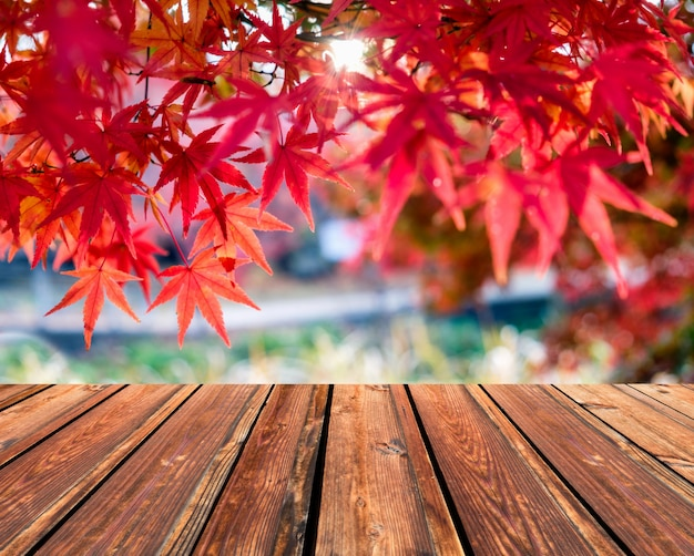 Wooden table top on blurred red maple leaves in corridor garden