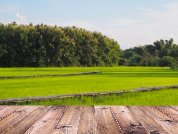 Wooden table top over green rice field background.