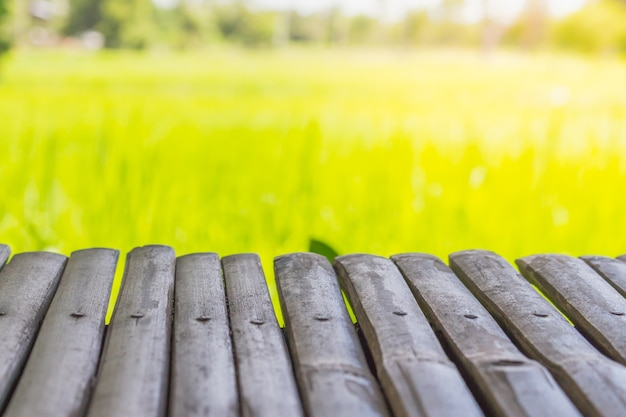 Wooden terrace view with green rice field background