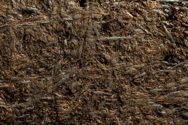 Wooden texture background, abstract texture