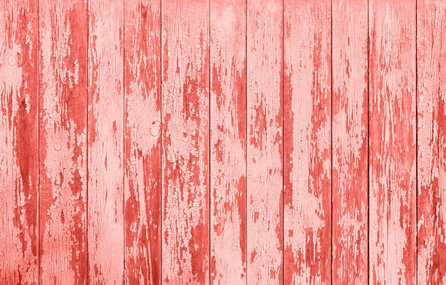 Wooden texture of popular living coral color