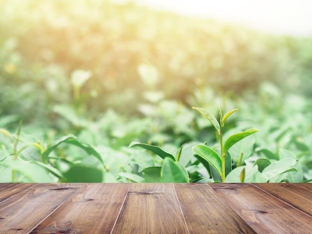 Деревянный верхний стол над зеленым полем чая