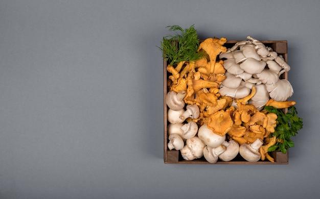 ニュートラルグレーの背景に生牡蠣とアンズタケのキノコが入った木製トレイ。テキスト用のスペースをコピーします。バナー。